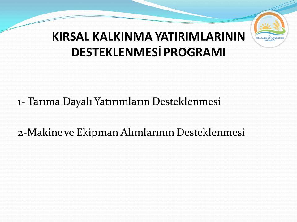 KIRSAL KALKINMA YATIRIMLARININ DESTEKLENMESİ PROGRAMI