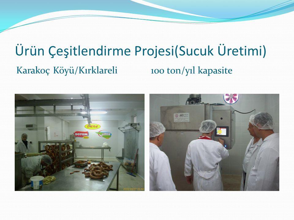 Ürün Çeşitlendirme Projesi(Sucuk Üretimi)