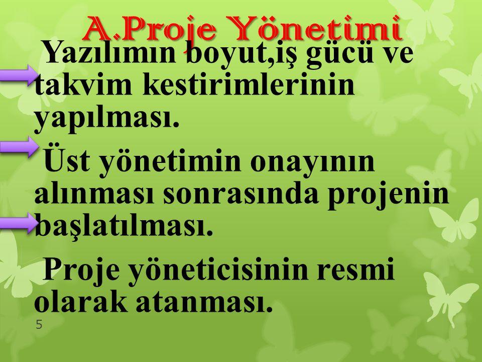 A.Proje Yönetimi