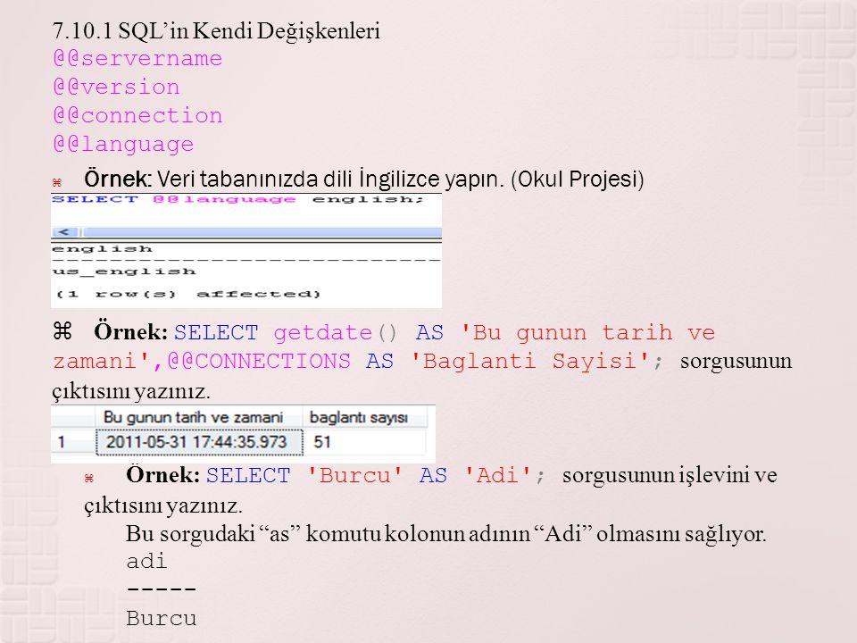 7.10.1 SQL'in Kendi Değişkenleri