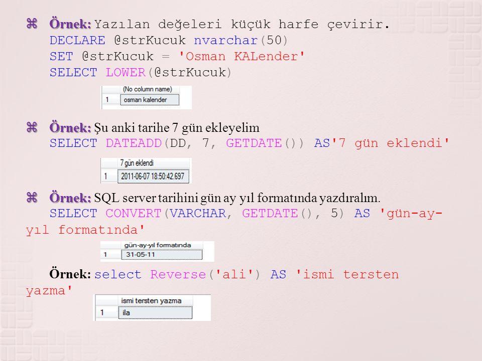 Örnek: Yazılan değeleri küçük harfe çevirir.