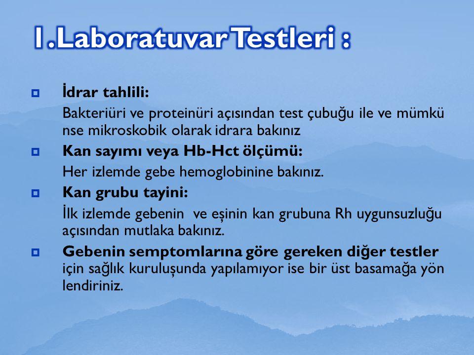 1.Laboratuvar Testleri :