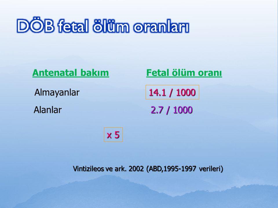 DÖB fetal ölüm oranları