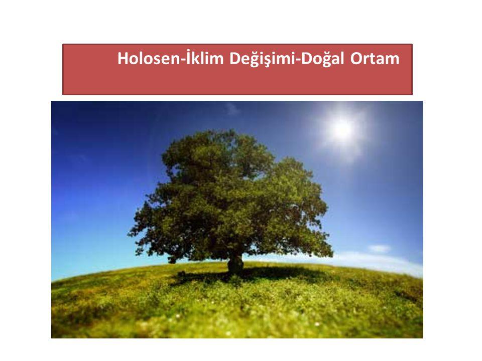 Holosen-İklim Değişimi-Doğal Ortam