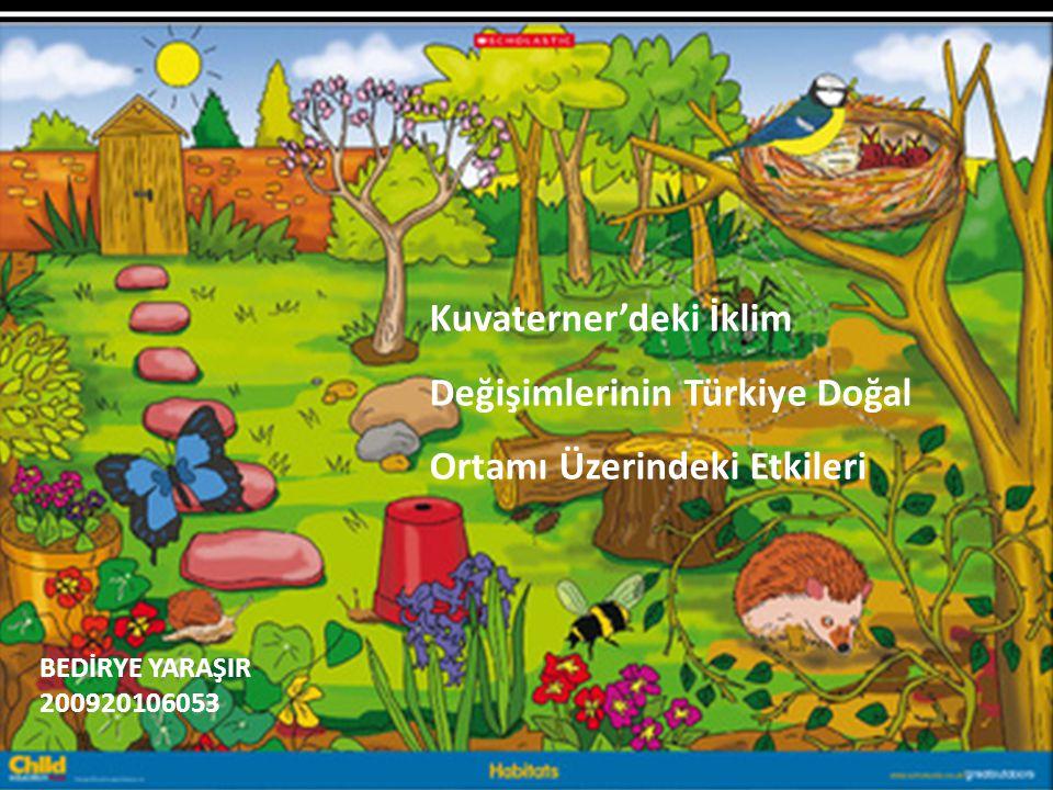Kuvaterner'deki İklim Değişimlerinin Türkiye Doğal Ortamı Üzerindeki Etkileri