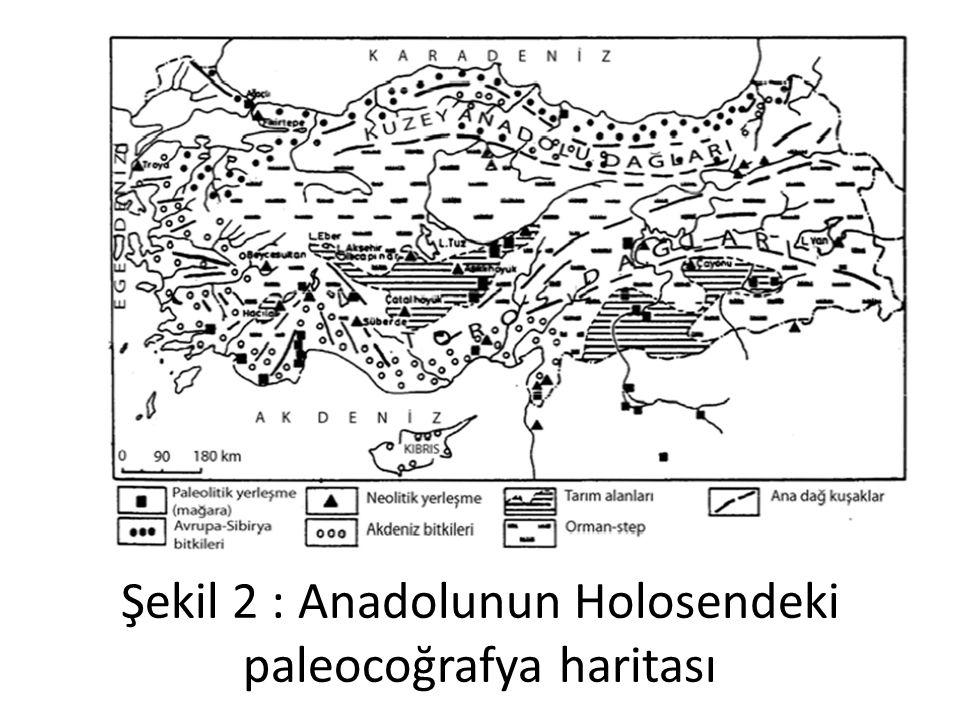 Şekil 2 : Anadolunun Holosendeki paleocoğrafya haritası