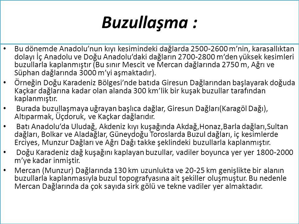 Buzullaşma :