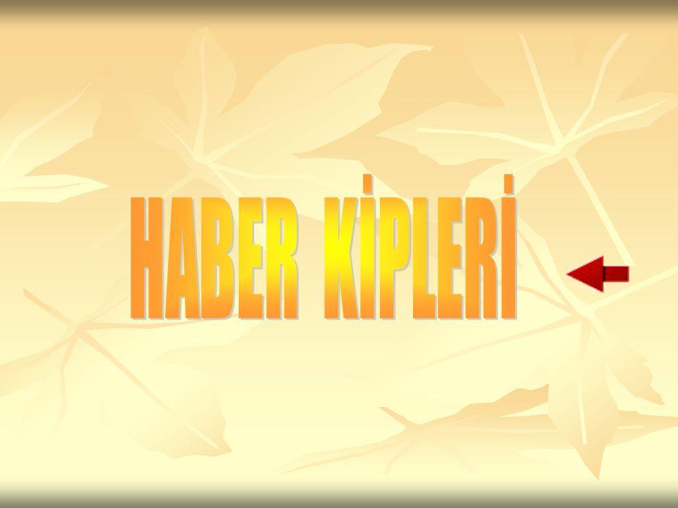 HABER KİPLERİ
