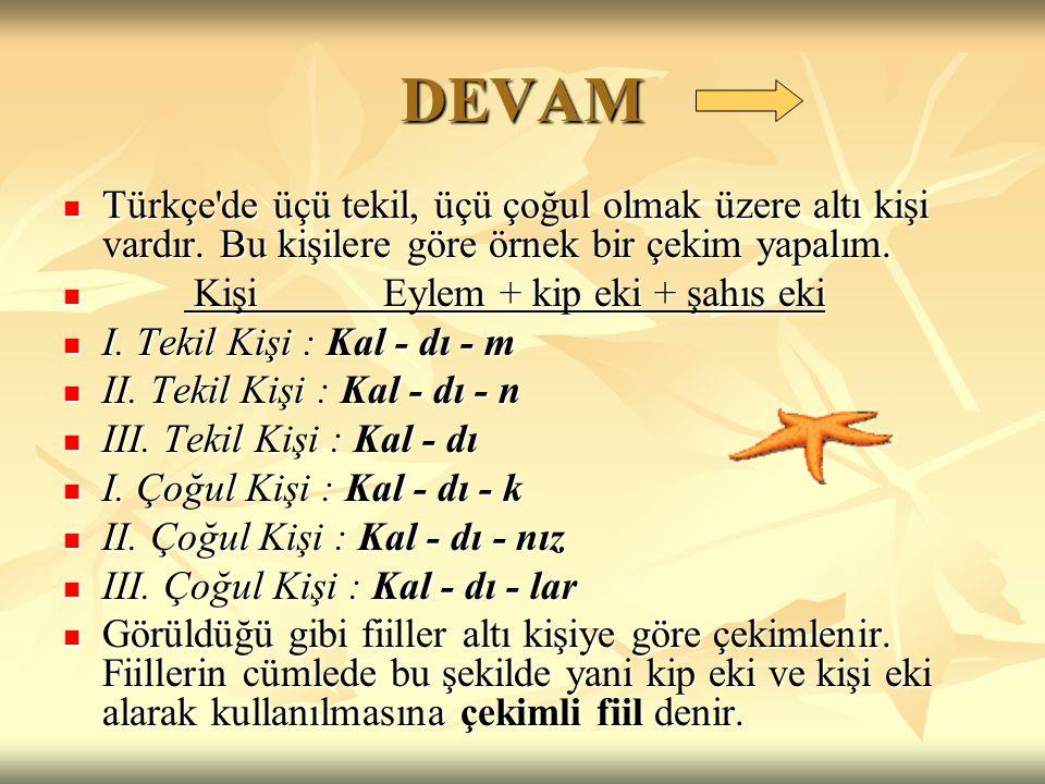DEVAM Türkçe de üçü tekil, üçü çoğul olmak üzere altı kişi vardır. Bu kişilere göre örnek bir çekim yapalım.