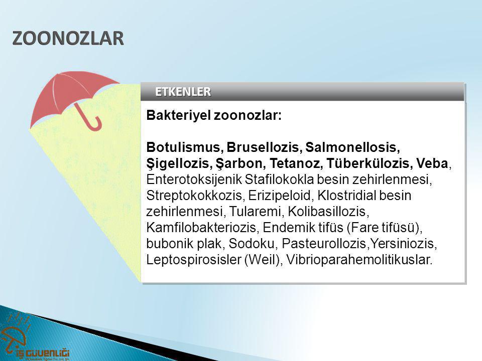 ZOONOZLAR ETKENLER Bakteriyel zoonozlar: