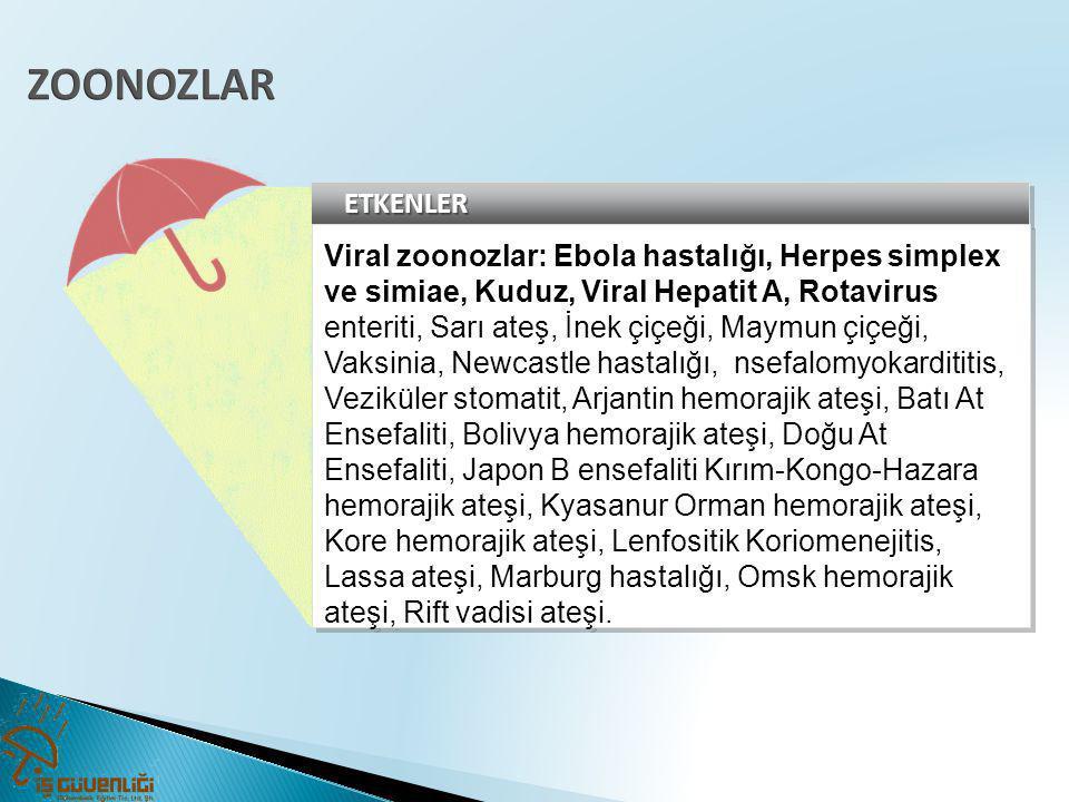 ZOONOZLAR ETKENLER. Viral zoonozlar: Ebola hastalığı, Herpes simplex ve simiae, Kuduz, Viral Hepatit A, Rotavirus.