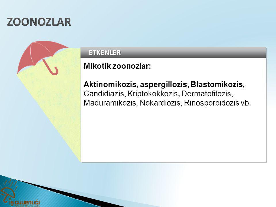 ZOONOZLAR ETKENLER Mikotik zoonozlar: