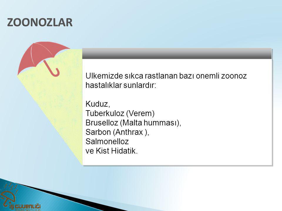 ZOONOZLAR Ulkemizde sıkca rastlanan bazı onemli zoonoz hastalıklar sunlardır: Kuduz, Tuberkuloz (Verem)