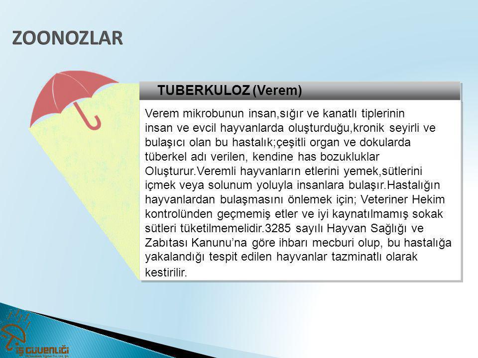 ZOONOZLAR TUBERKULOZ (Verem)
