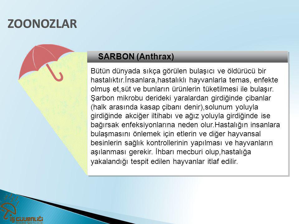 ZOONOZLAR SARBON (Anthrax)