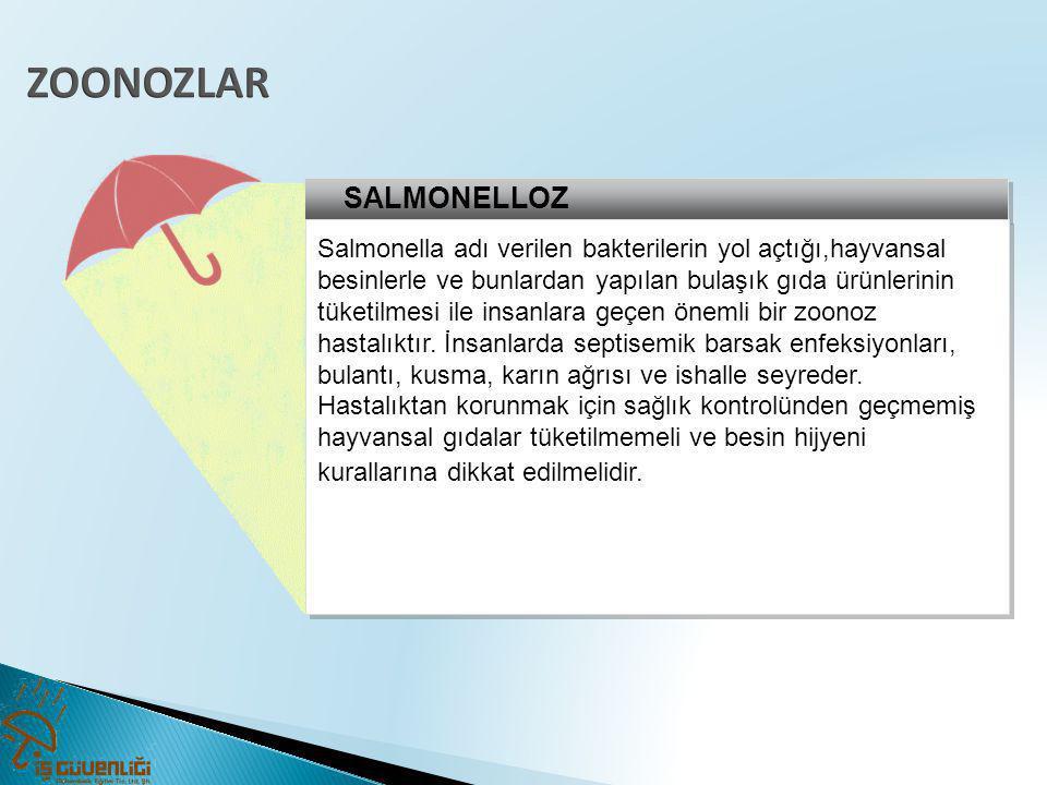 ZOONOZLAR SALMONELLOZ