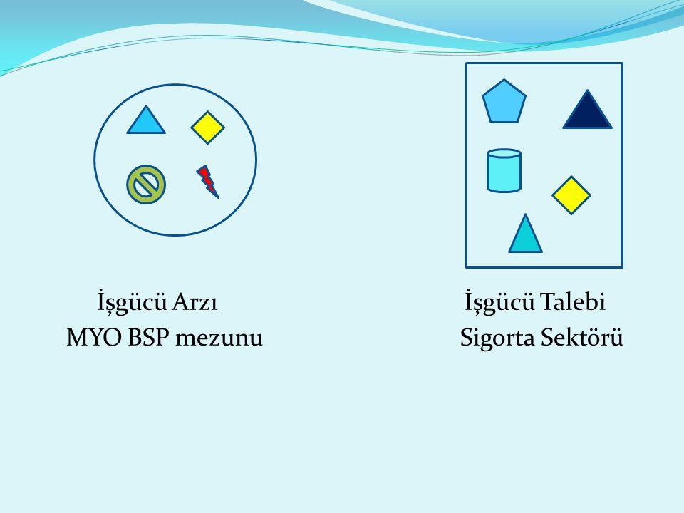 İşgücü Arzı İşgücü Talebi MYO BSP mezunu Sigorta Sektörü