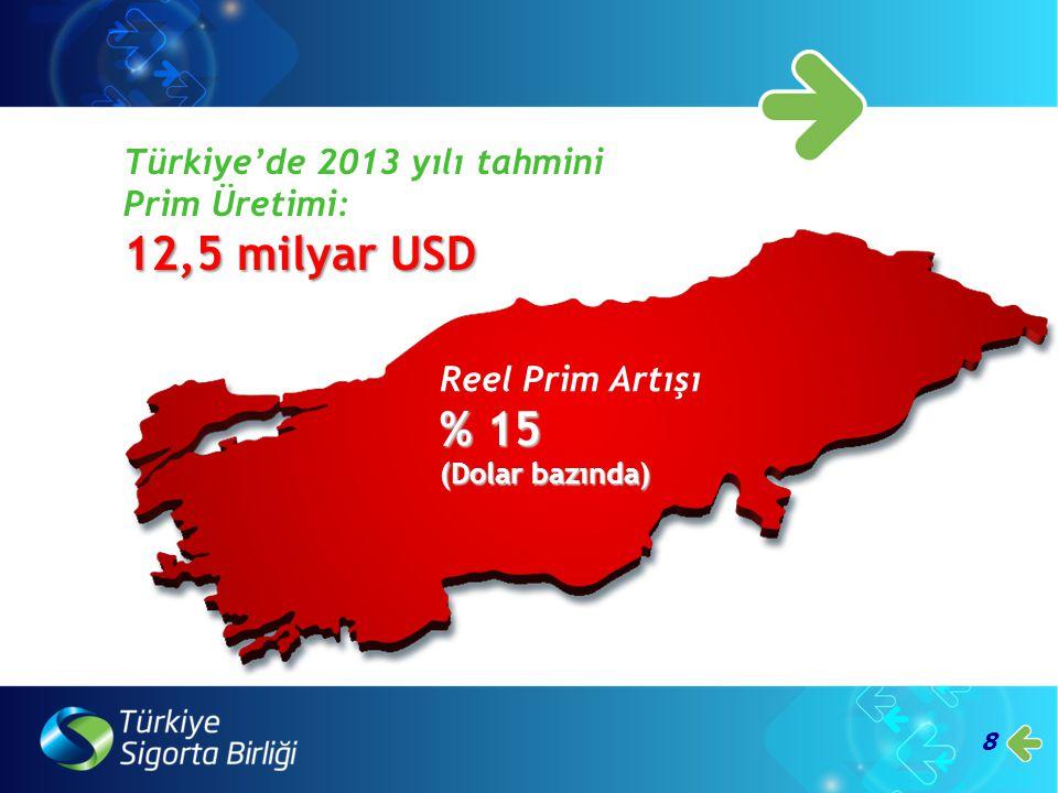 12,5 milyar USD % 15 Türkiye'de 2013 yılı tahmini Prim Üretimi: