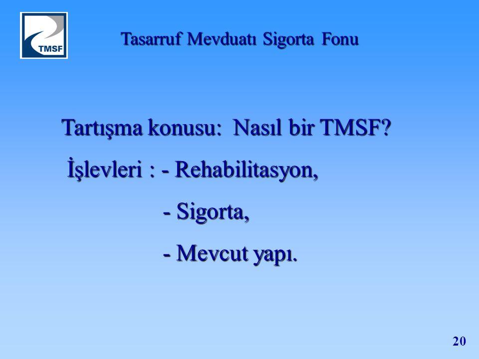 Tartışma konusu: Nasıl bir TMSF