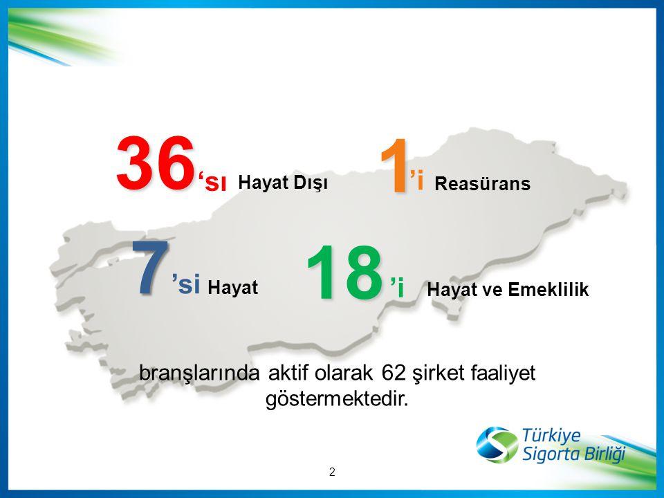 branşlarında aktif olarak 62 şirket faaliyet göstermektedir.