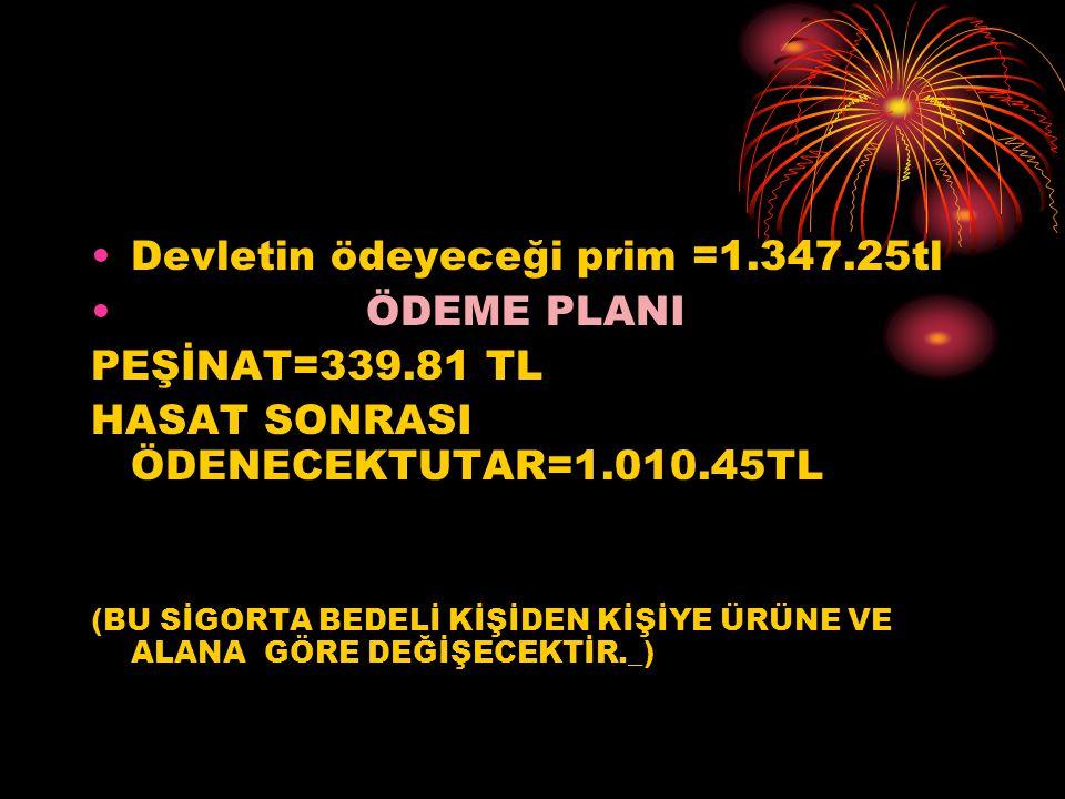Devletin ödeyeceği prim =1.347.25tl ÖDEME PLANI PEŞİNAT=339.81 TL