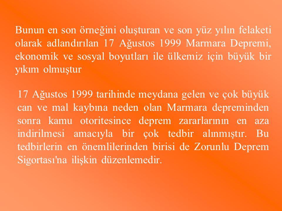 Bunun en son örneğini oluşturan ve son yüz yılın felaketi olarak adlandırılan 17 Ağustos 1999 Marmara Depremi, ekonomik ve sosyal boyutları ile ülkemiz için büyük bir yıkım olmuştur