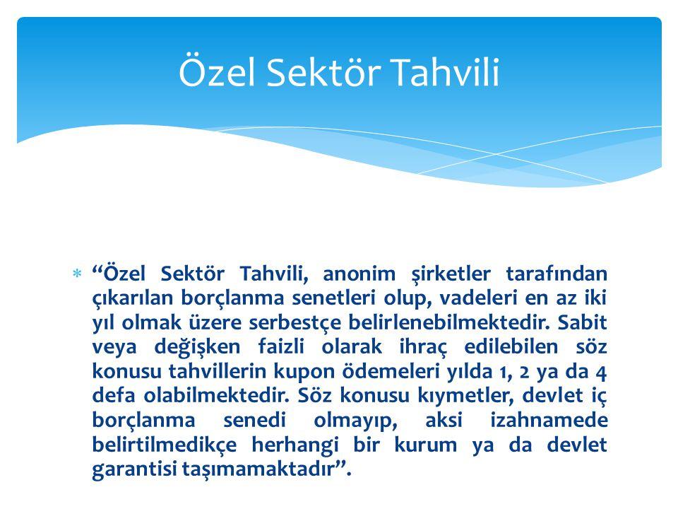 Özel Sektör Tahvili
