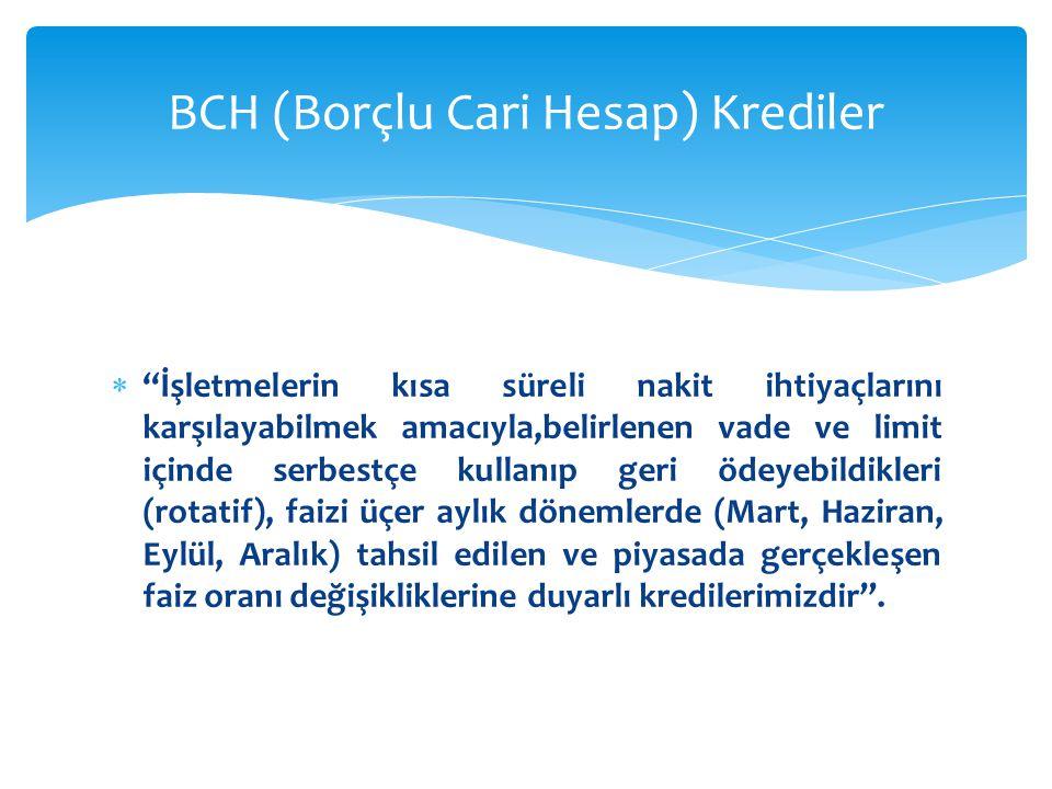 BCH (Borçlu Cari Hesap) Krediler