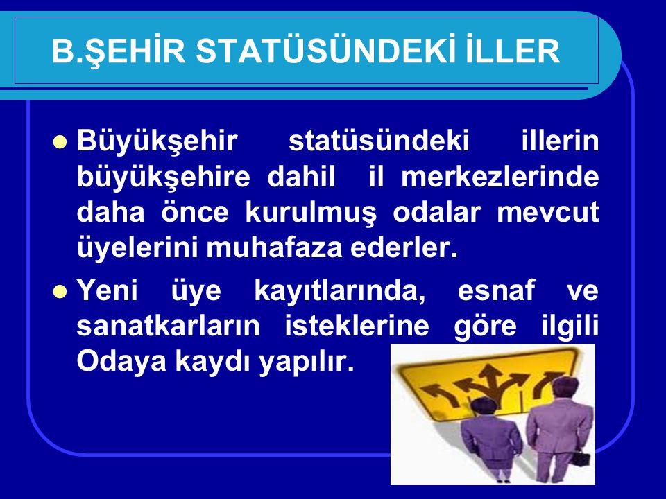 B.ŞEHİR STATÜSÜNDEKİ İLLER