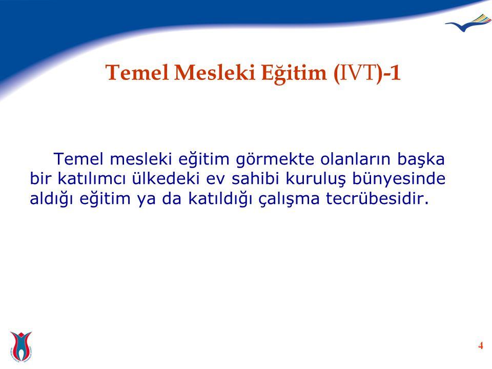 Temel Mesleki Eğitim (IVT)-1