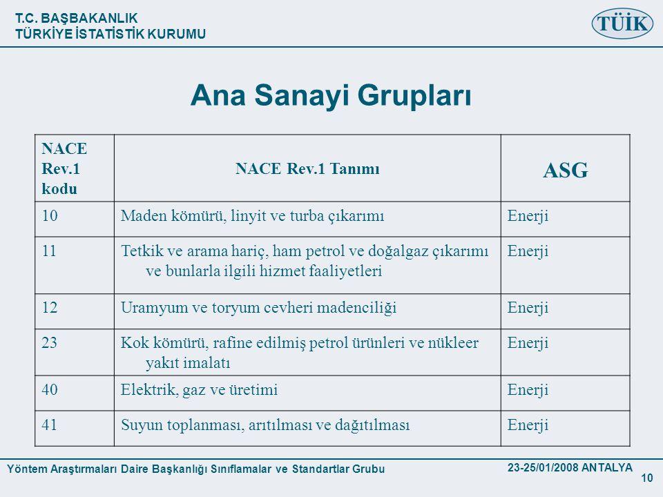 Ana Sanayi Grupları ASG NACE Rev.1 kodu NACE Rev.1 Tanımı 10