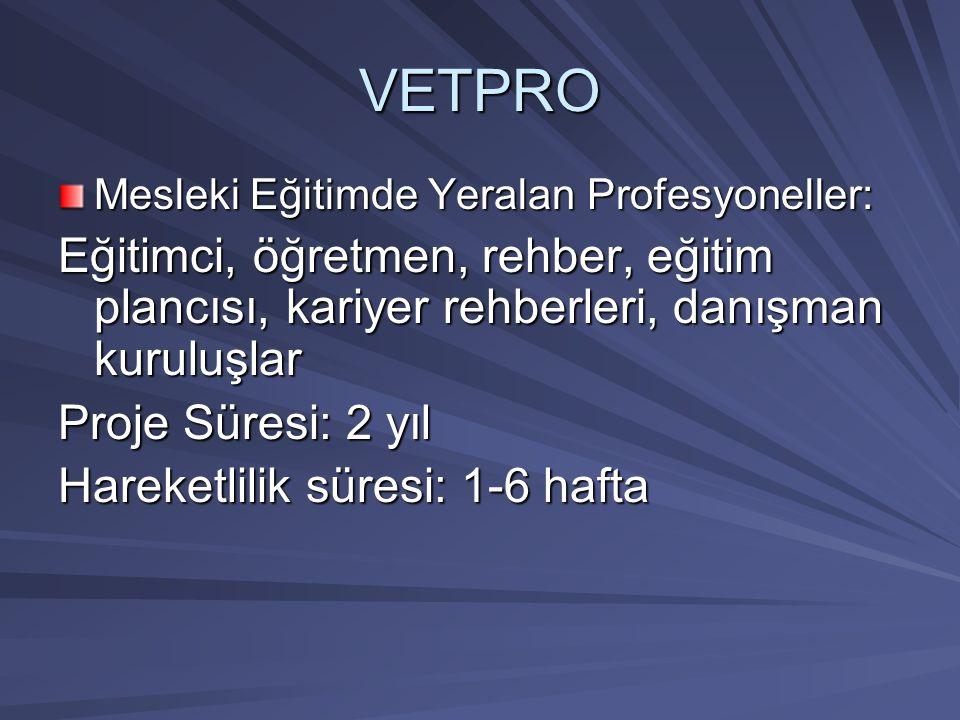 VETPRO Mesleki Eğitimde Yeralan Profesyoneller: Eğitimci, öğretmen, rehber, eğitim plancısı, kariyer rehberleri, danışman kuruluşlar.