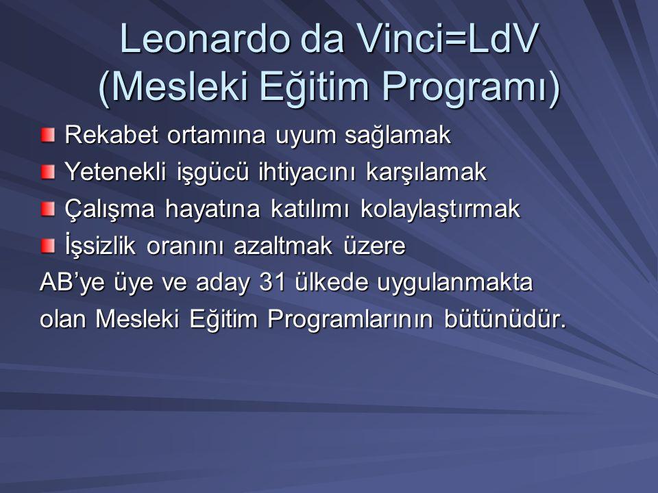 Leonardo da Vinci=LdV (Mesleki Eğitim Programı)