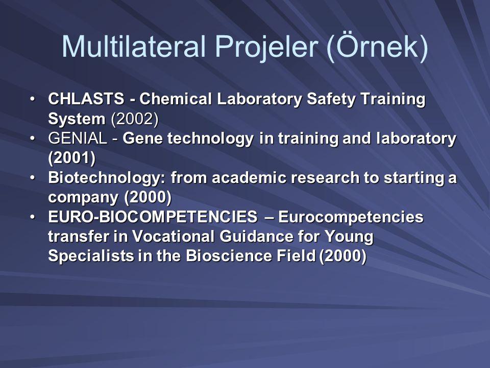Multilateral Projeler (Örnek)