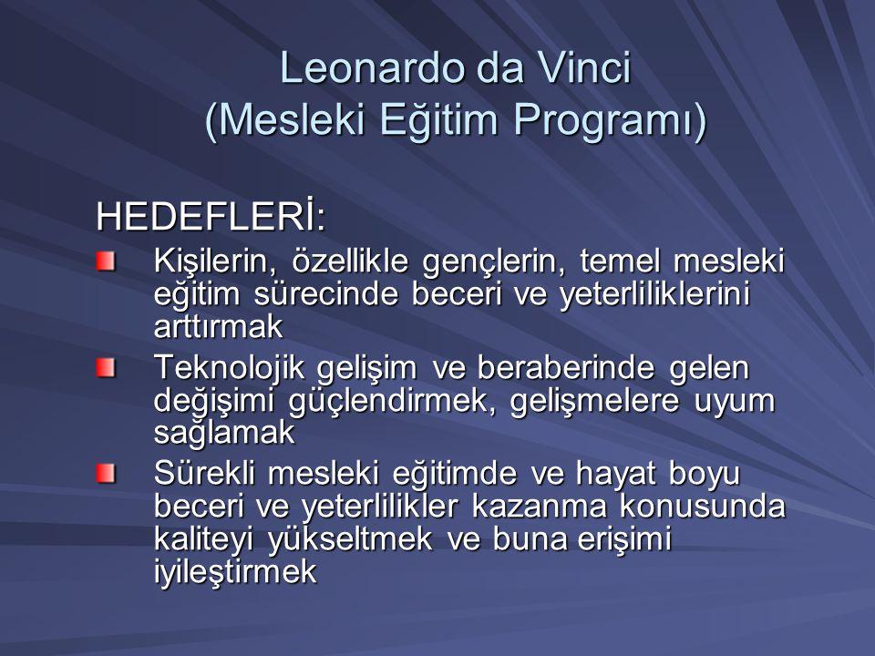 Leonardo da Vinci (Mesleki Eğitim Programı)