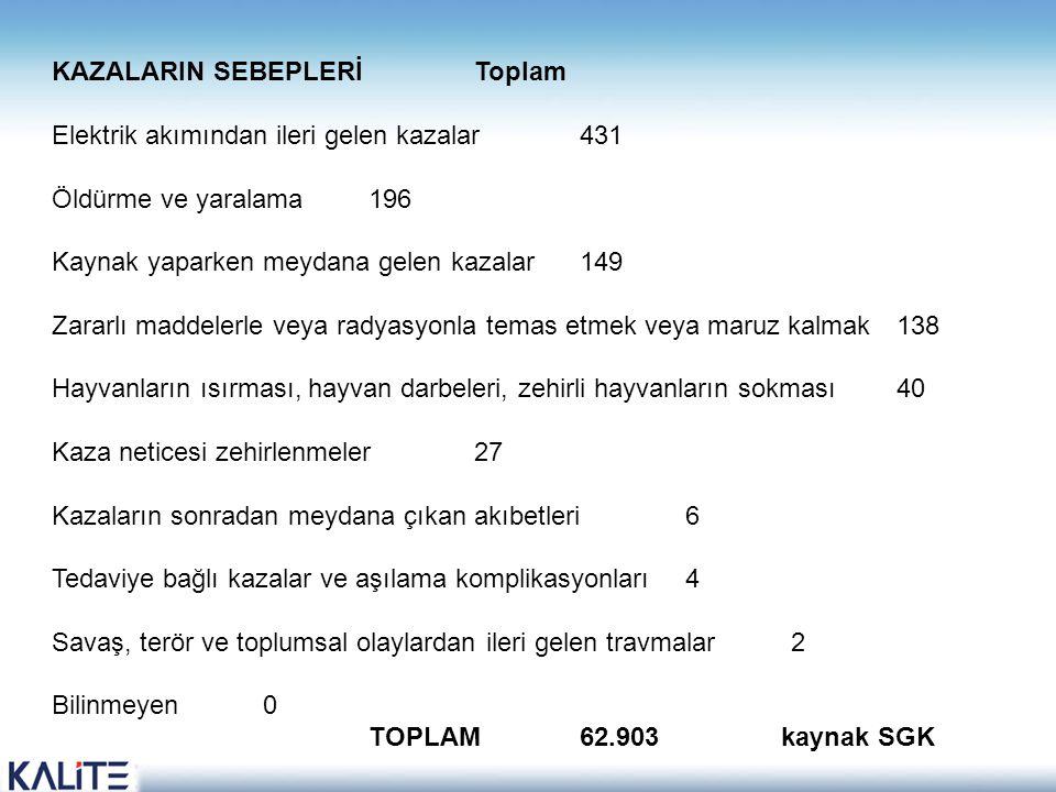 KAZALARIN SEBEPLERİ Toplam