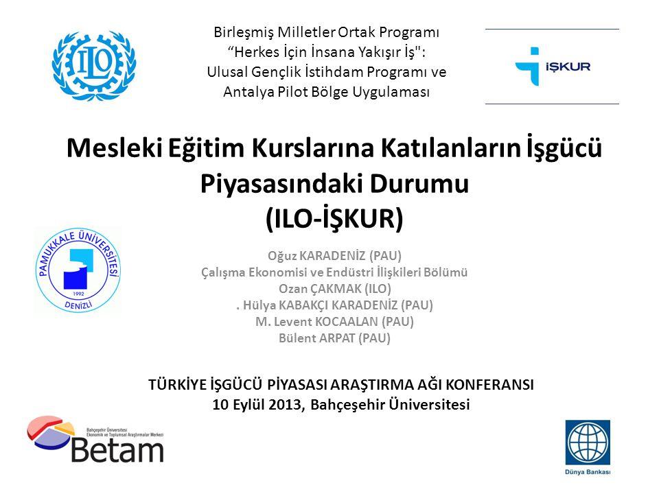 Birleşmiş Milletler Ortak Programı