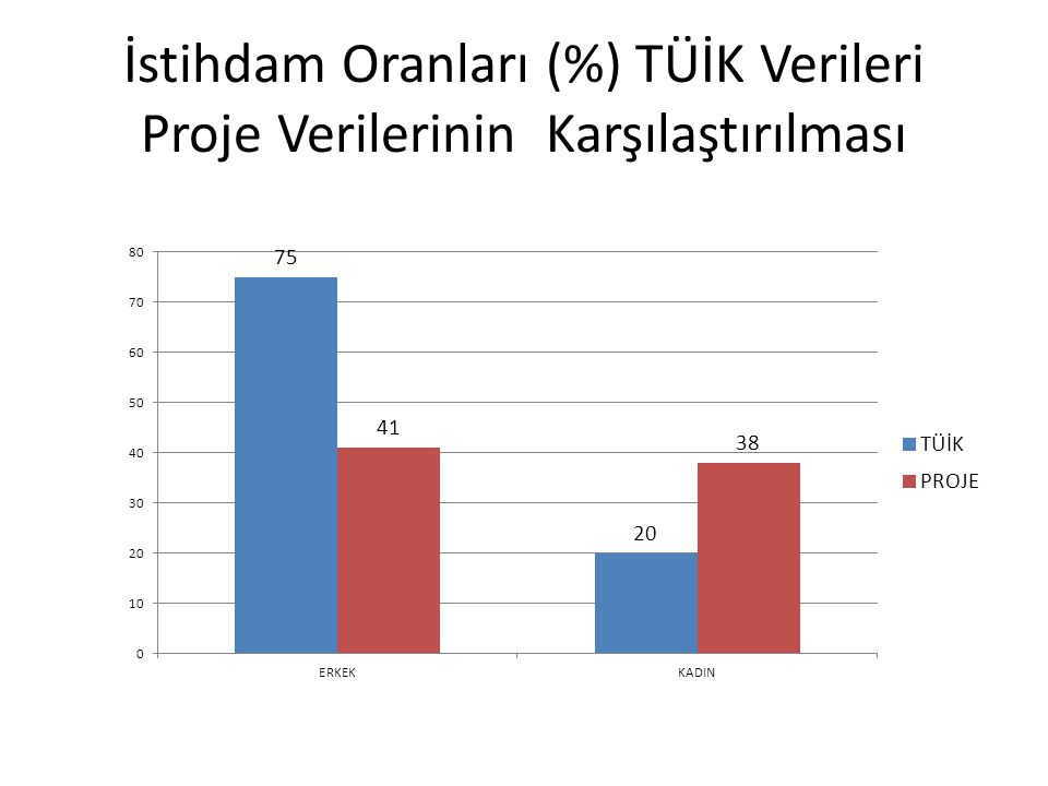 İstihdam Oranları (%) TÜİK Verileri Proje Verilerinin Karşılaştırılması