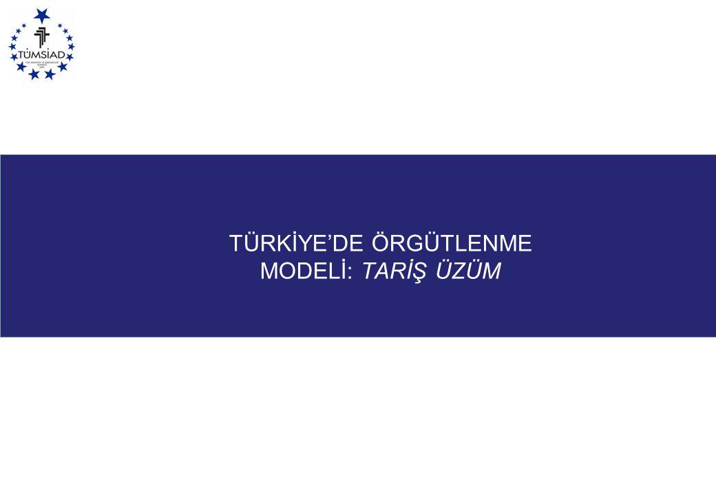 TÜRKİYE'DE ÖRGÜTLENME MODELİ: TARİŞ ÜZÜM