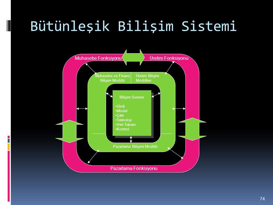 Bütünleşik Bilişim Sistemi