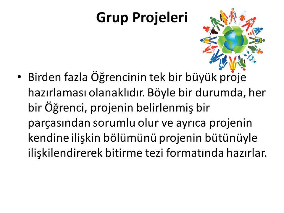 Grup Projeleri