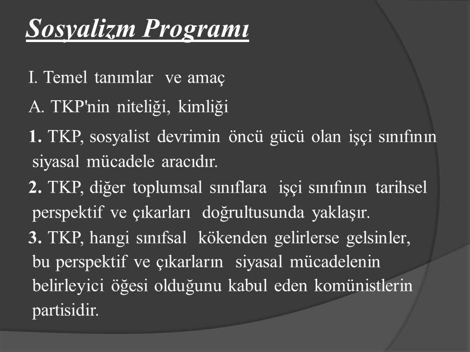 Sosyalizm Programı
