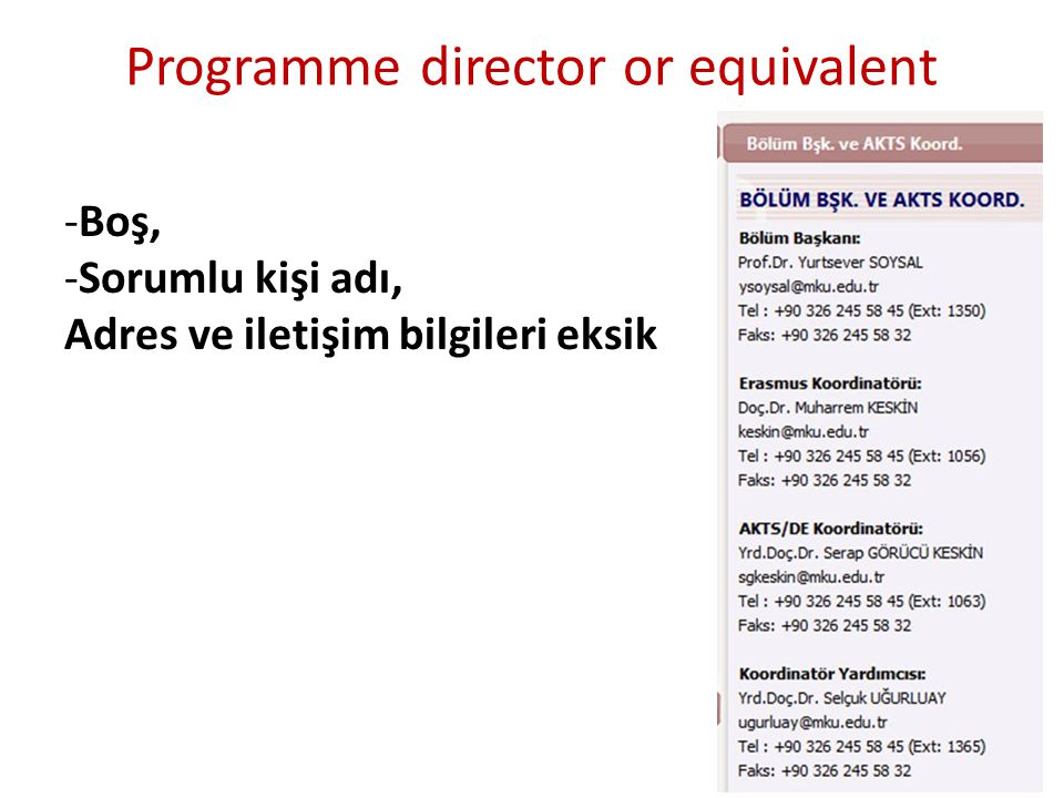 Programme director or equivalent