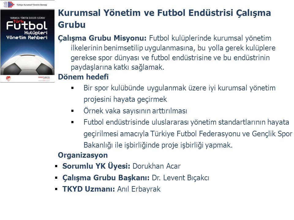 Kurumsal Yönetim ve Futbol Endüstrisi Çalışma Grubu