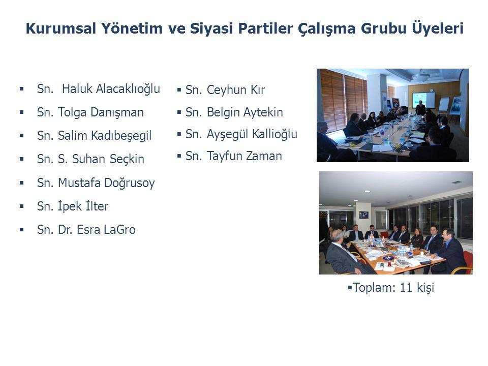 Kurumsal Yönetim ve Siyasi Partiler Çalışma Grubu Üyeleri