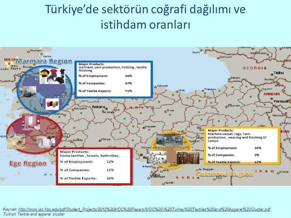 Türkiye'de sektörün coğrafi dağılımı ve istihdam oranları
