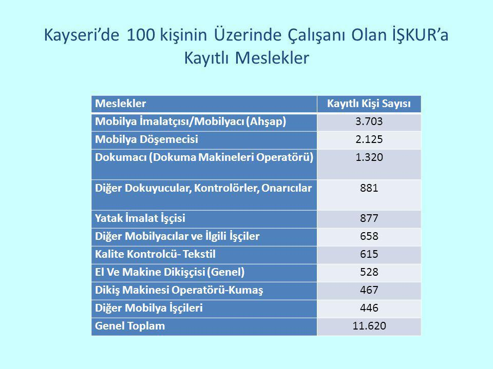 Kayseri'de 100 kişinin Üzerinde Çalışanı Olan İŞKUR'a Kayıtlı Meslekler