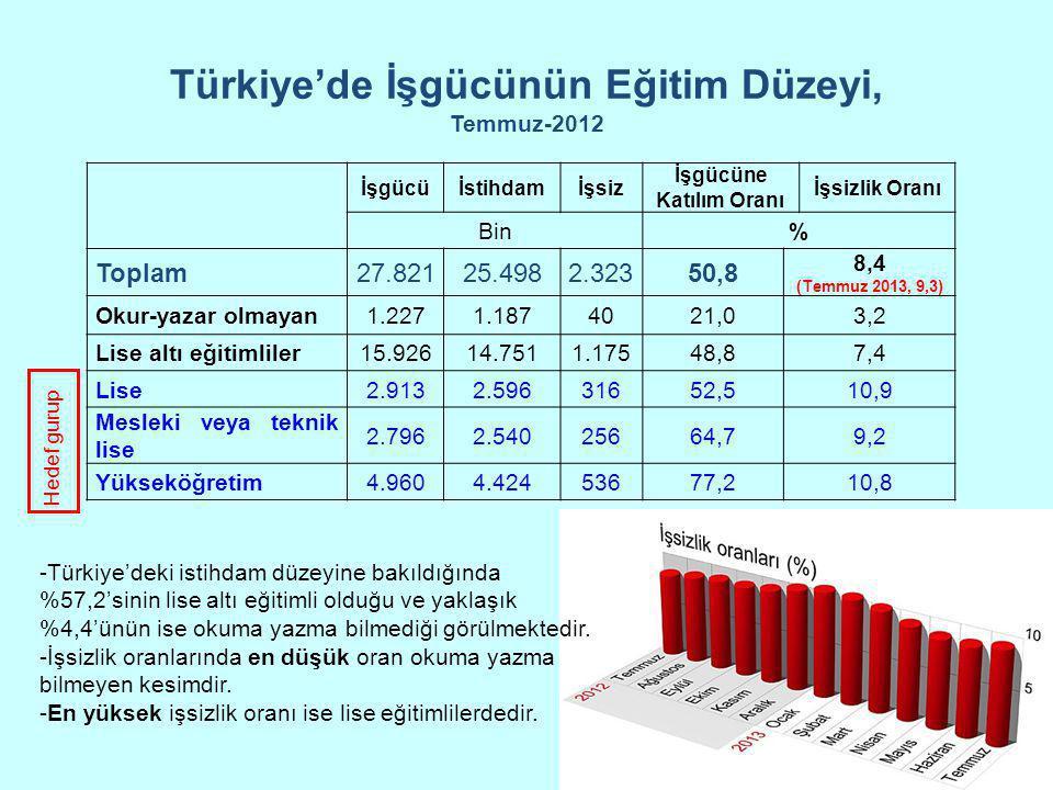 Türkiye'de İşgücünün Eğitim Düzeyi, Temmuz-2012