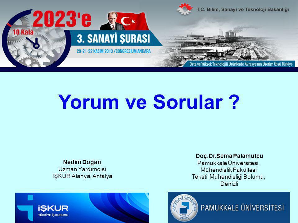 Yorum ve Sorular Doç.Dr.Sema Palamutcu Pamukkale Üniversitesi,