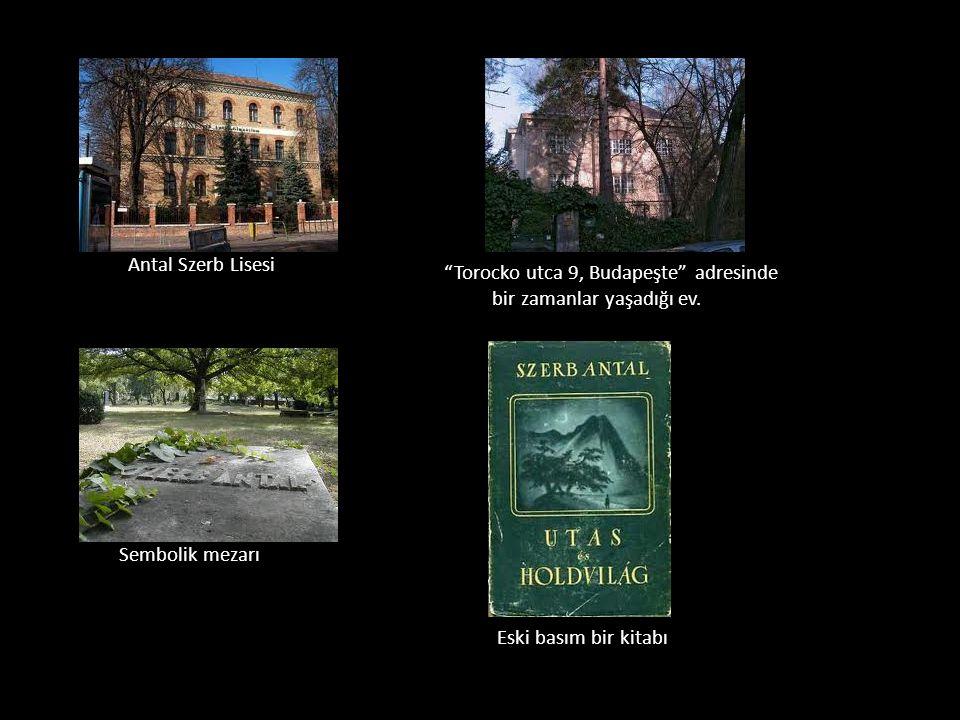 Antal Szerb Lisesi Torocko utca 9, Budapeşte adresinde bir zamanlar yaşadığı ev. Sembolik mezarı.